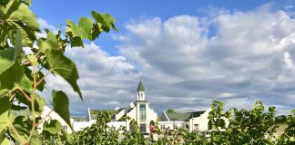 The Vineyard at St. Joseph Catholic Church