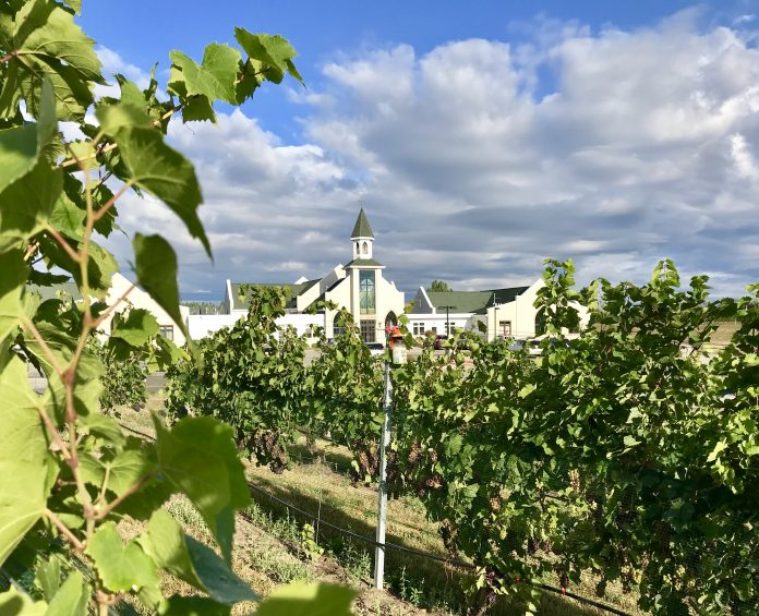 The Vineyard at St. Joseph Catholic Church