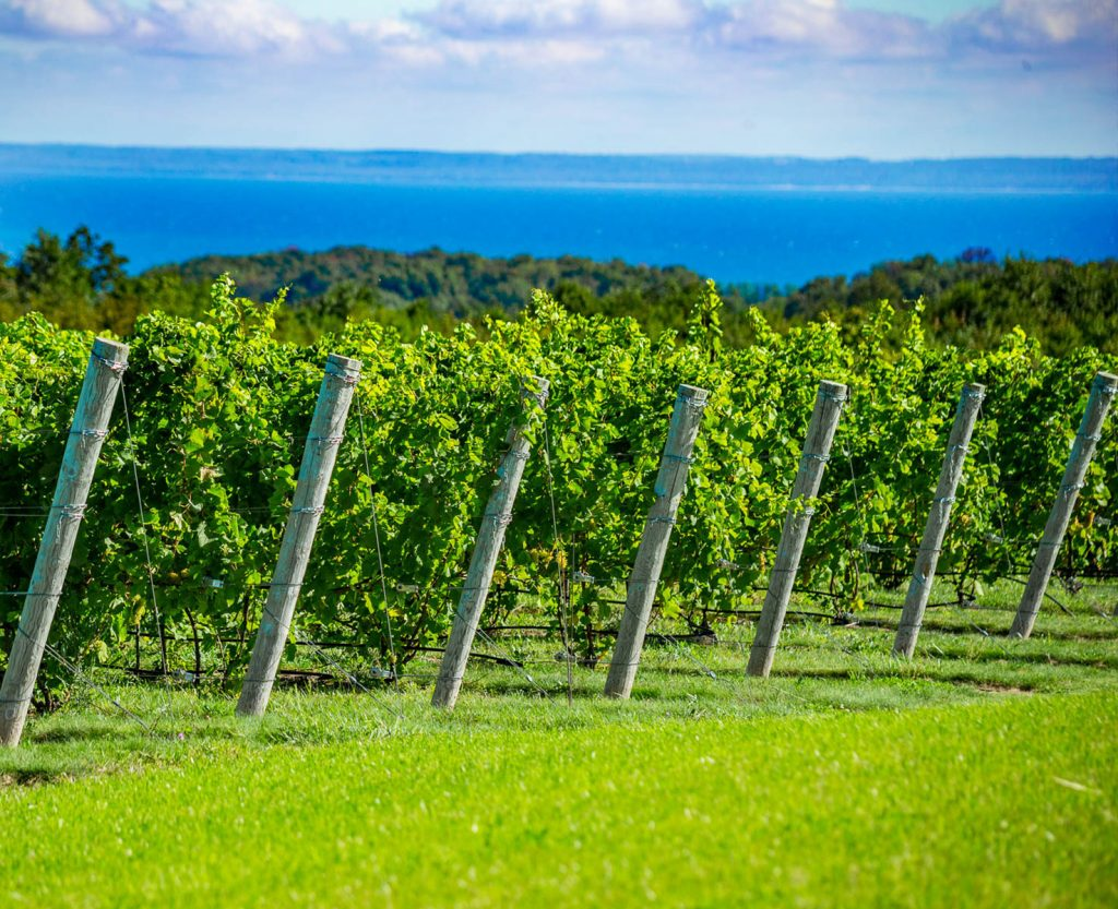 leelanau wine trail