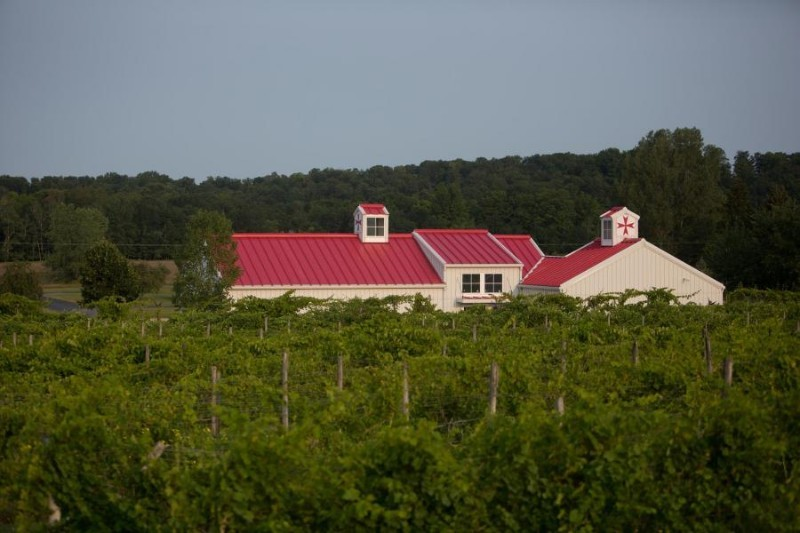 Tabone-Vineyards