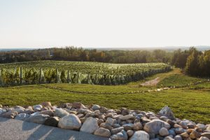 Acreage. (Courtesy of Rove Estate/photo by Captured by Grace)